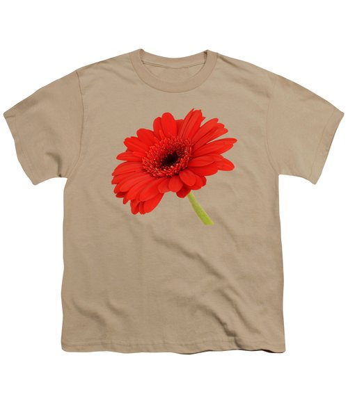 Red Gerbera Daisy 2 Youth T-Shirt by Scott Carruthers