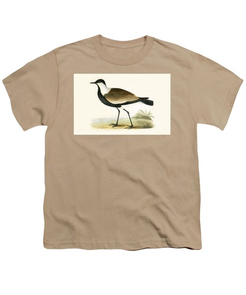 Spur Winged Plover Youth T-Shirt by English School