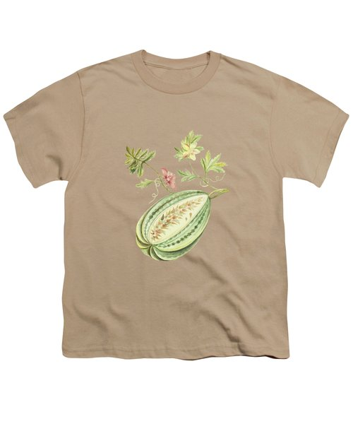 Watermelon With Leaves And Butterfly By Cornelis Markee 1763 Youth T-Shirt