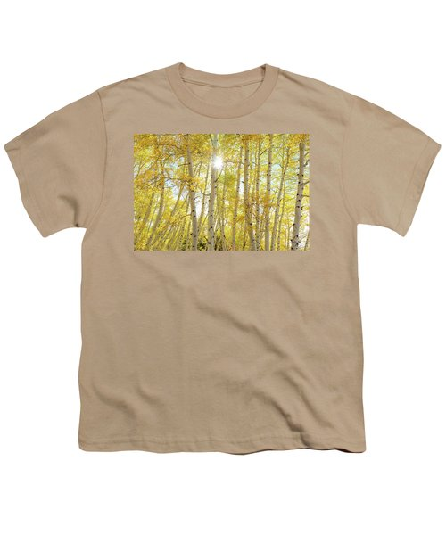 Youth T-Shirt featuring the photograph Golden Sunshine On An Autumn Day by James BO Insogna