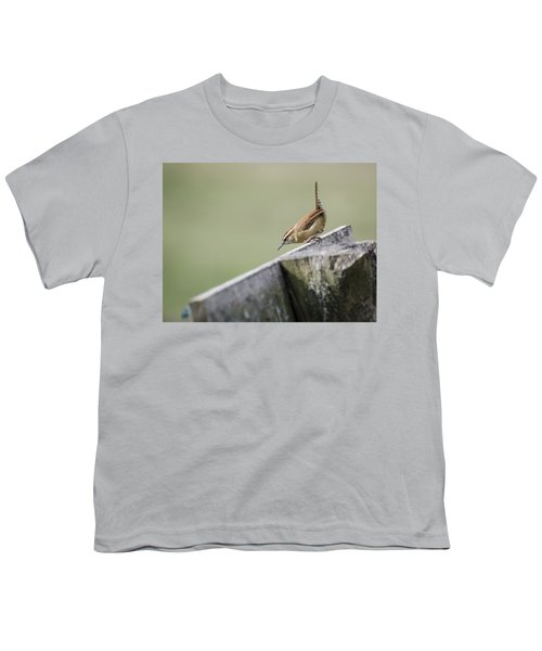 Carolina Wren Two Youth T-Shirt by Heather Applegate