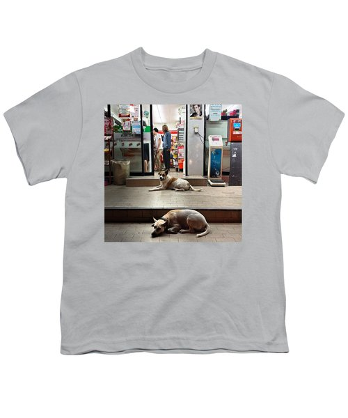 Youth T-Shirt featuring the photograph Let Sleeping Dogs Lie Where They May by Mr Photojimsf