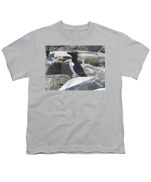 Razorbill Youth T-Shirt by James Petersen