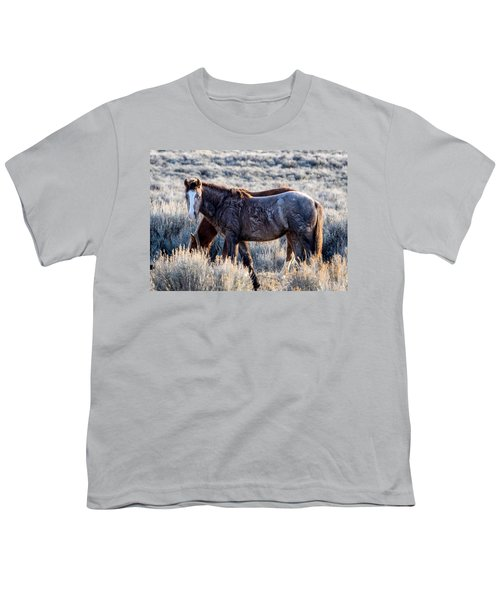 Velvet - Young Colt In Sand Wash Basin Youth T-Shirt