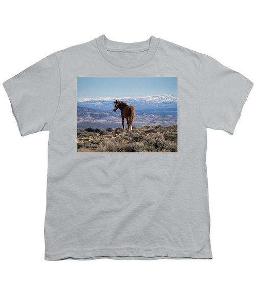 Wild Stallion Of Sand Wash Basin Youth T-Shirt