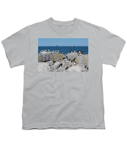 Auk Island Youth T-Shirt by Bruce J Robinson