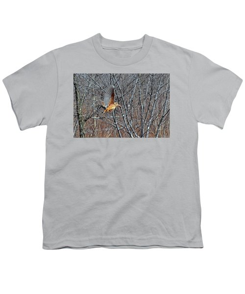 American Woodcock In Takeoff Flight Youth T-Shirt by Asbed Iskedjian