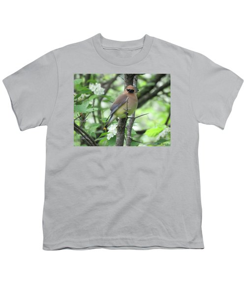 Cedar Wax Wing Youth T-Shirt by Alison Gimpel