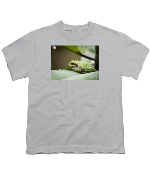 Youth T-Shirt featuring the photograph Gray Tree Frog - North American Tree Frog by Ricky L Jones