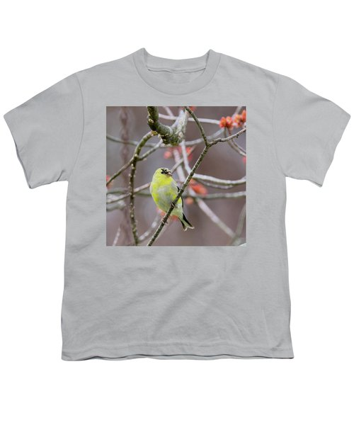 Youth T-Shirt featuring the photograph Molting Gold Finch Square by Bill Wakeley