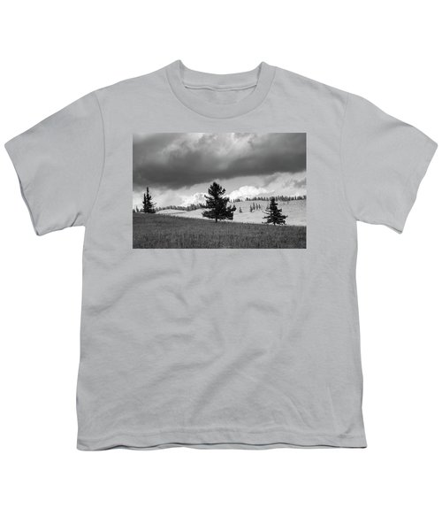 Moody Meadow, Tsenkher, 2016 Youth T-Shirt