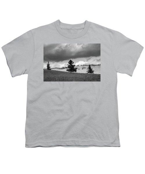 Moody Meadow, Tsenkher, 2016 Youth T-Shirt