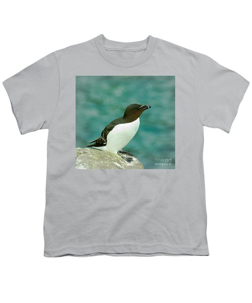 Razorbill Youth T-Shirt by Nick Eagles