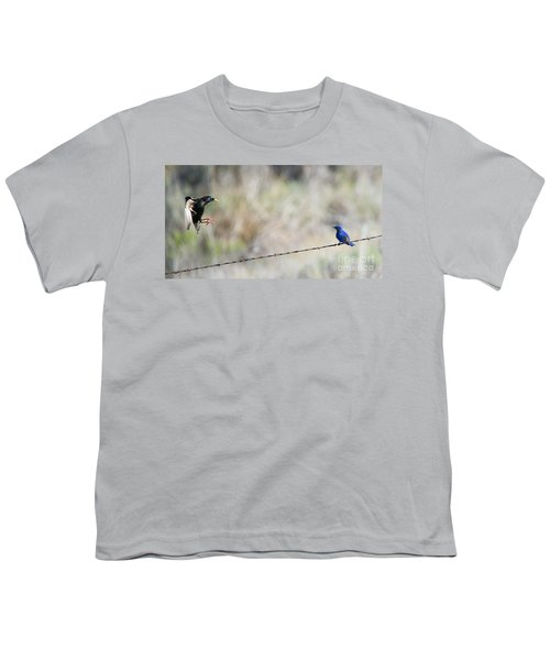 Starling Attack Youth T-Shirt by Mike Dawson