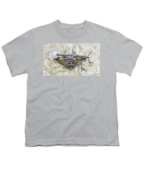 The Hopper Grasshopper Art Youth T-Shirt by Reid Callaway