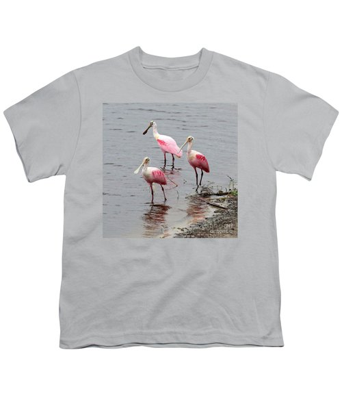 Three Roseate Spoonbills Square Youth T-Shirt by Carol Groenen