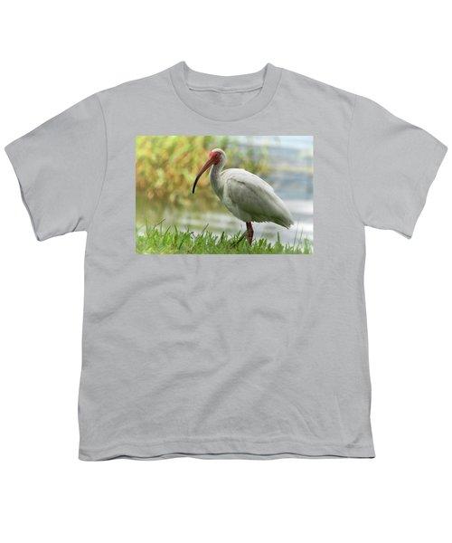 White Ibis On The Florida Shore  Youth T-Shirt by Saija Lehtonen