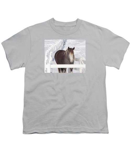 Winter Horse Youth T-Shirt