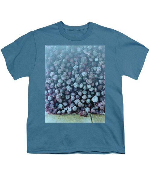 Frozen Blueberries Youth T-Shirt