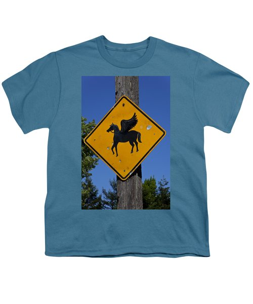 Pegasus Road Sign Youth T-Shirt