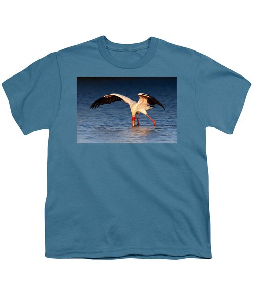Yellow-billed Stork Hunting For Food Youth T-Shirt by Johan Swanepoel
