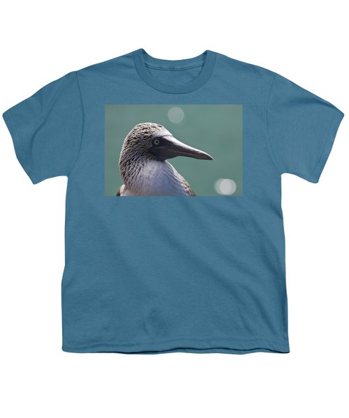 Blue Footed Booby II Youth T-Shirt by Dave Fleetham
