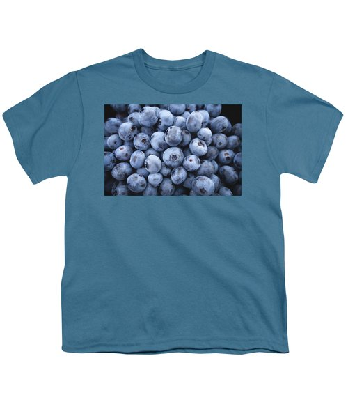 Blueberries Youth T-Shirt by Happy Home Artistry