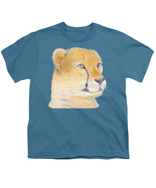 Cheetah 3 Youth T-Shirt by Gilbert Pennison