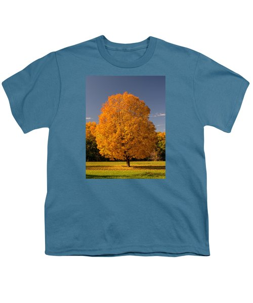 Golden Tree Of Autumn Youth T-Shirt