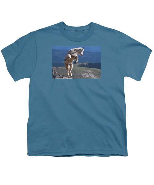 Youth T-Shirt featuring the photograph Jump by Gary Lengyel