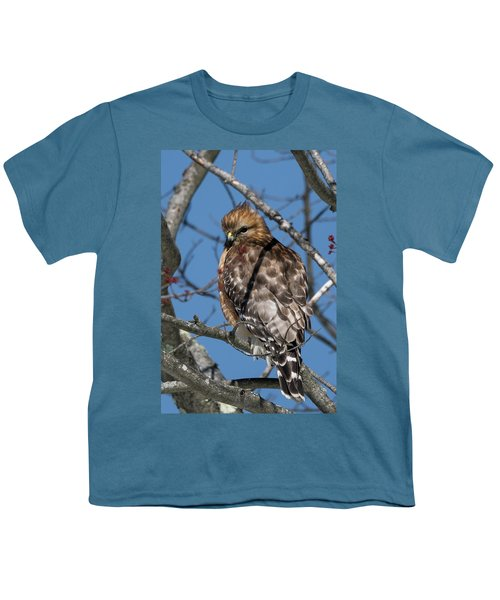 Youth T-Shirt featuring the photograph Red Shouldered Hawk 2017 by Bill Wakeley