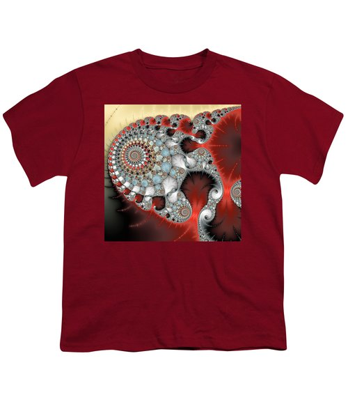 Wonderful Abstract Fractal Spirals Red Grey Yellow And Light Blue Youth T-Shirt by Matthias Hauser