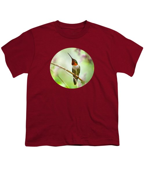 Hummingbird Looking For Love Youth T-Shirt by Christina Rollo