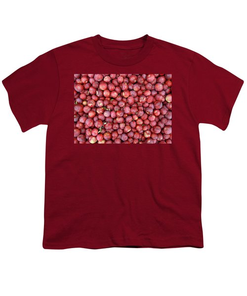 Red Apples Background Youth T-Shirt