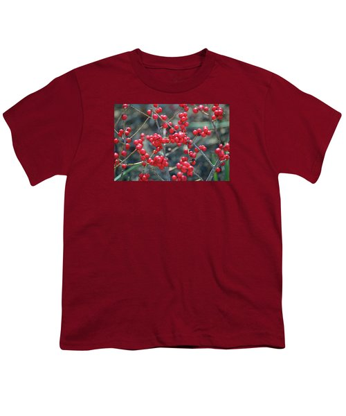 Winterberries Youth T-Shirt by Sandy Taylor