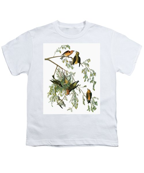 Audubon Crossbill Youth T-Shirt