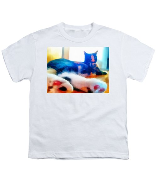 Cat Feet Youth T-Shirt by Derek Gedney