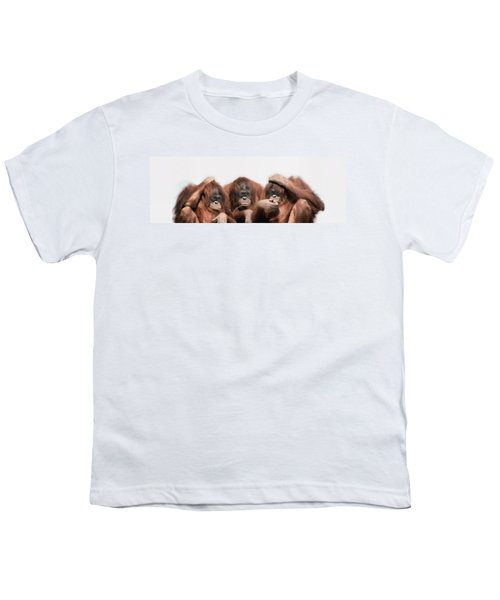 Close-up Of Three Orangutans Youth T-Shirt by Panoramic Images