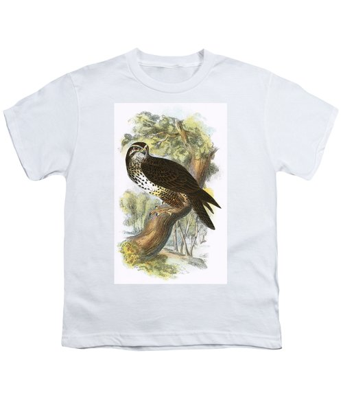 Common Buzzard Youth T-Shirt by English School