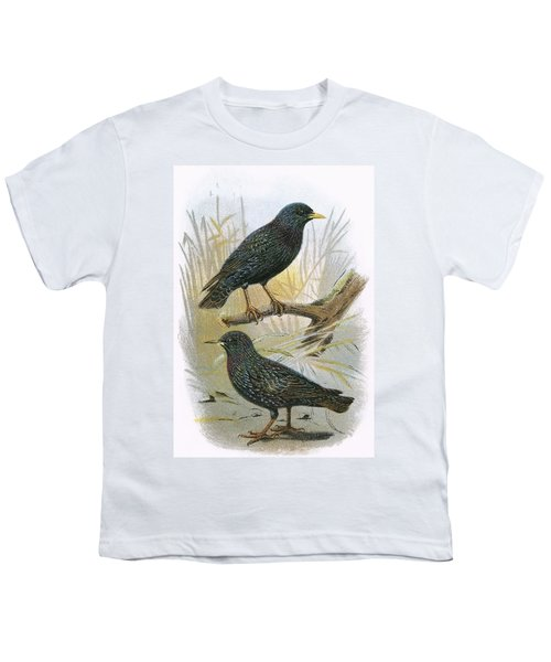 Common Starling Top And Intermediate Starling Bottom Youth T-Shirt by English School