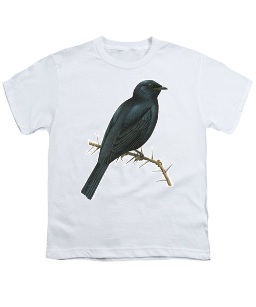 Cuckoo Shrike Youth T-Shirt by Anonymous