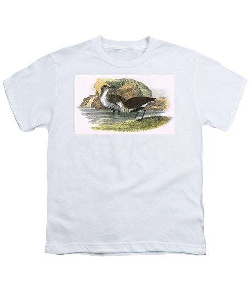 Dunlin Youth T-Shirt by English School