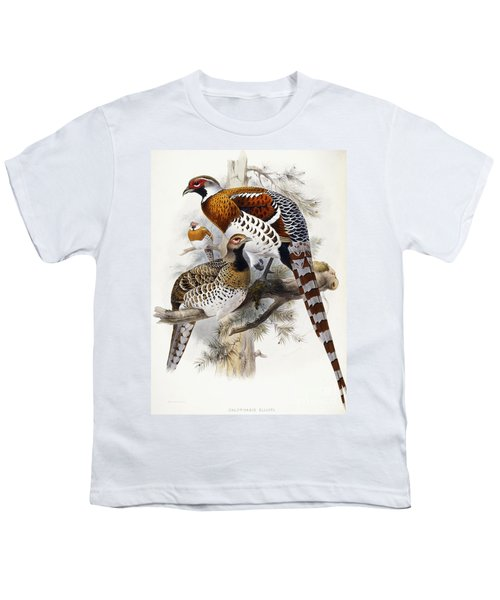 Elliot's Pheasant Youth T-Shirt by Joseph Wolf