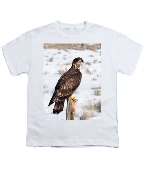 Golden Eagle On Fencepost Youth T-Shirt