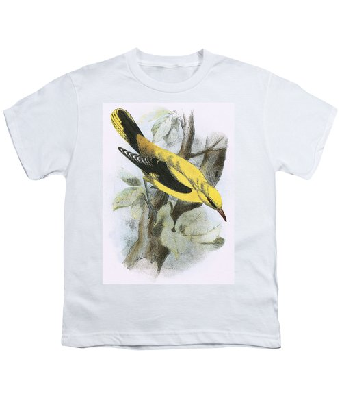Golden Oriole Youth T-Shirt by English School