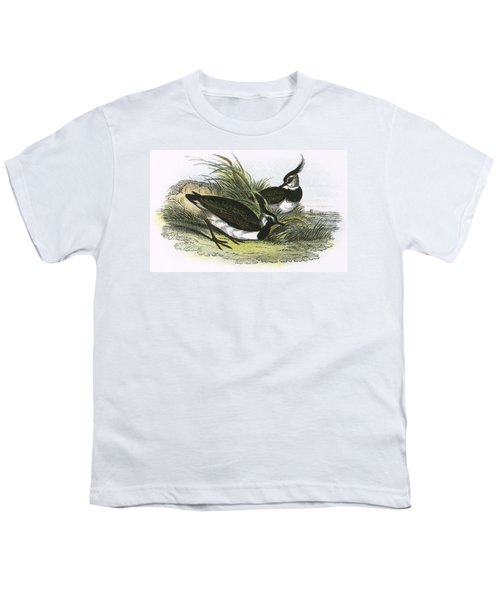 Lapwing Youth T-Shirt by English School