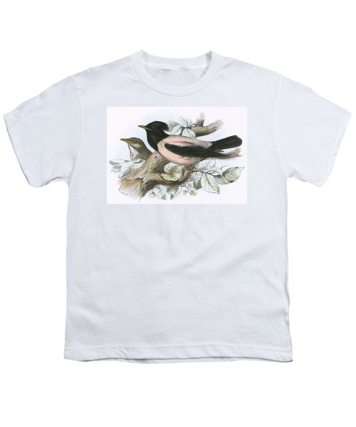 Rose Coloured Starling Youth T-Shirt by English School
