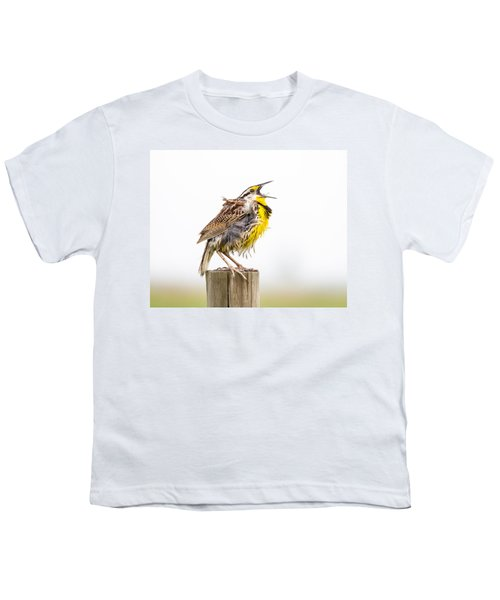 Singing Meadowlark 3rd Of 3 Youth T-Shirt