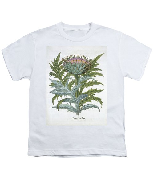 The Cardoon, From The Hortus Youth T-Shirt