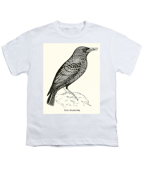 The Starling Youth T-Shirt by English School